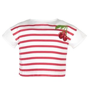 Dolce and Gabbana Striped Cherry Cropped T-Shirt &